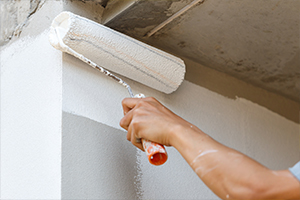 Plastering and Painting Services